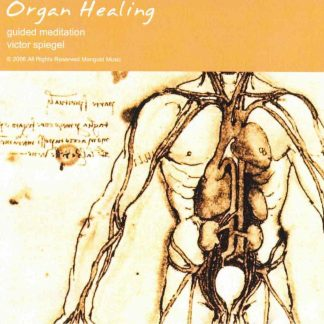 Organ Healing Audio Cover